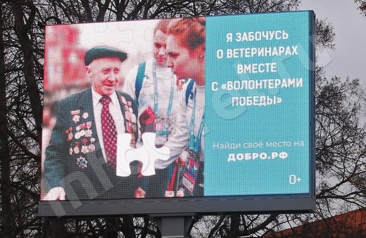 Еще несколько дней назад орловцев просили заботиться о ветеринарах. Фото: infoorel.ru