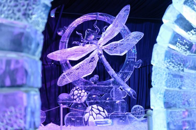 В этом году, на весь фестиваль ушло порядка 230 тонн льда.