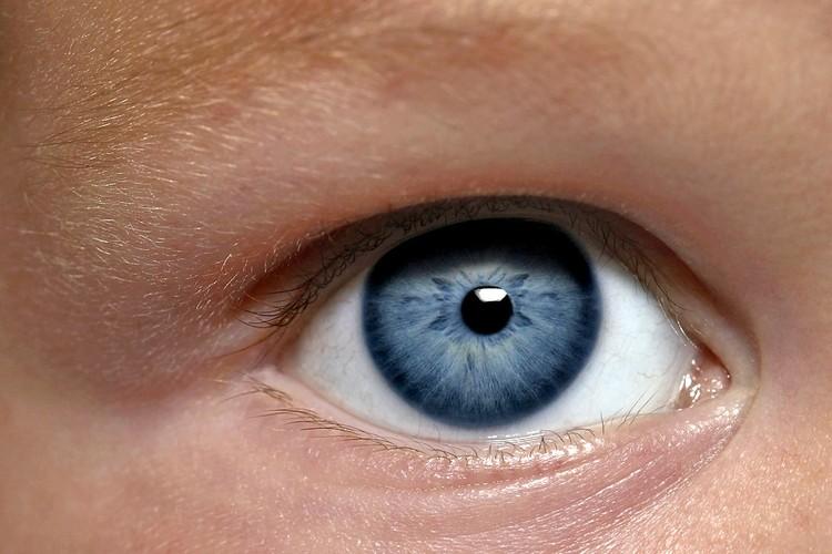 Об опыте реинкарнации может рассказать радужка глаз.