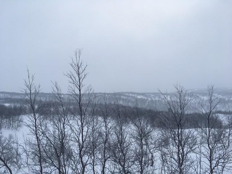 12 января небо заволокло облаками.