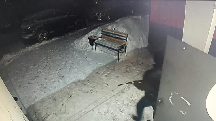 Мужчина выходит с оружием. Фото: скриншот