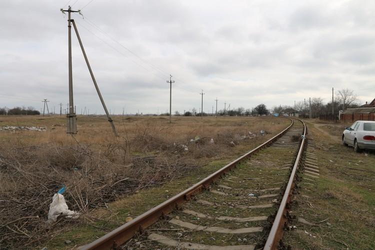 За железной дорогой начинаются поля и лесополосы
