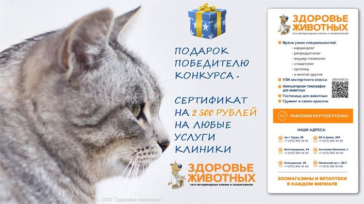 Участвуй в фотоконкурсе «КП-Воронеж» и выигрывай подарки!