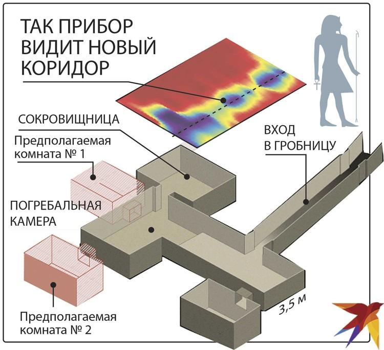 Гробница Тутанхамона: расположение предполагаемых потайных комнат (розовые) и тоннеля (синий).