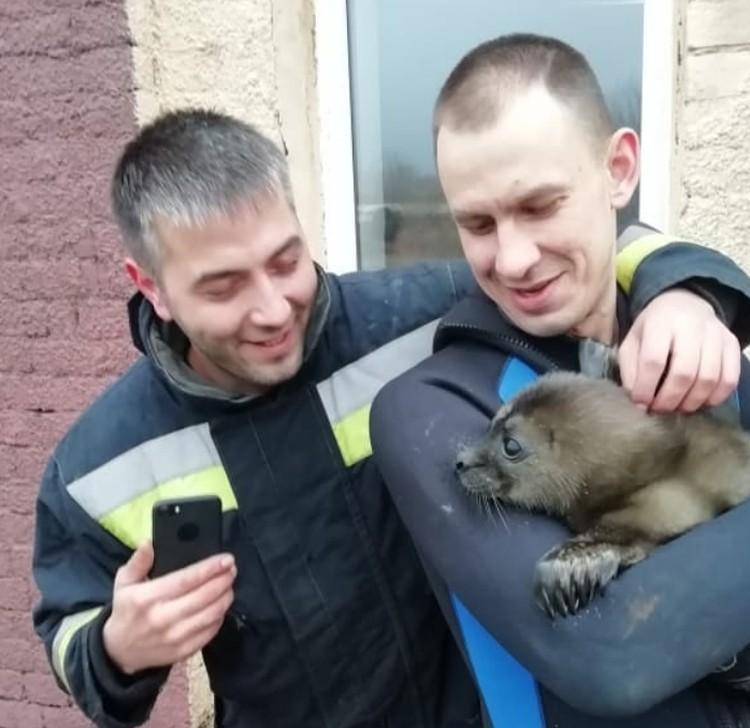 Спасатели МЧС были счастливы помочь малютке. Фото: vk.com/id115463662