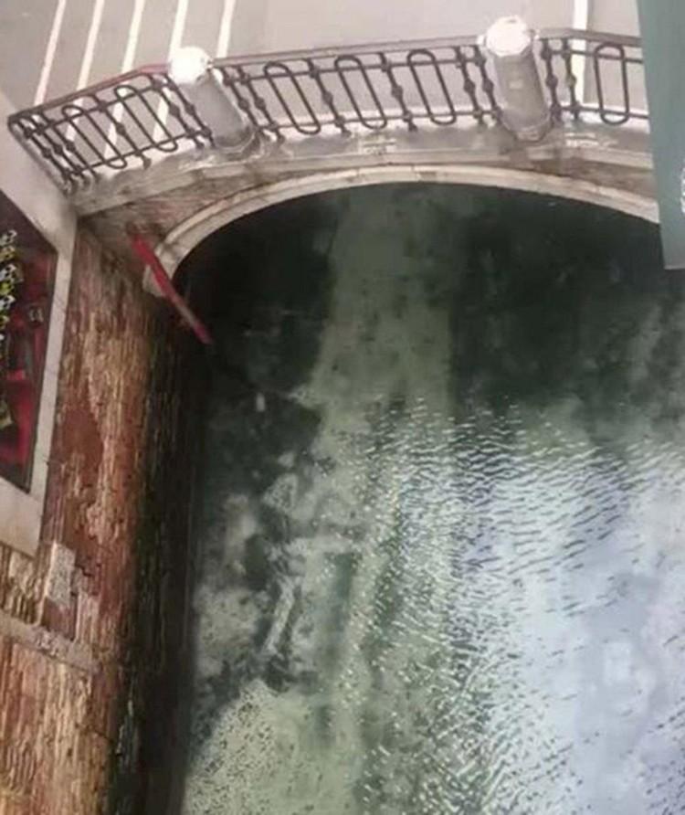 Вода стала такой чистой, что теперь в ней можно разглядеть мальков рыб. Фото: соцсети