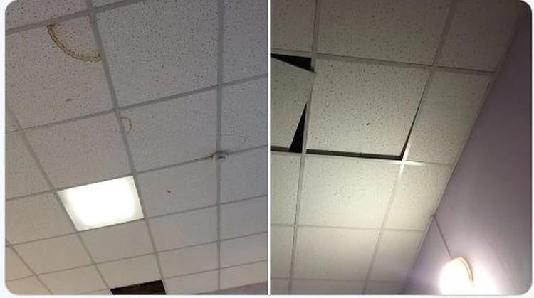Вот так выглядят потолки школы