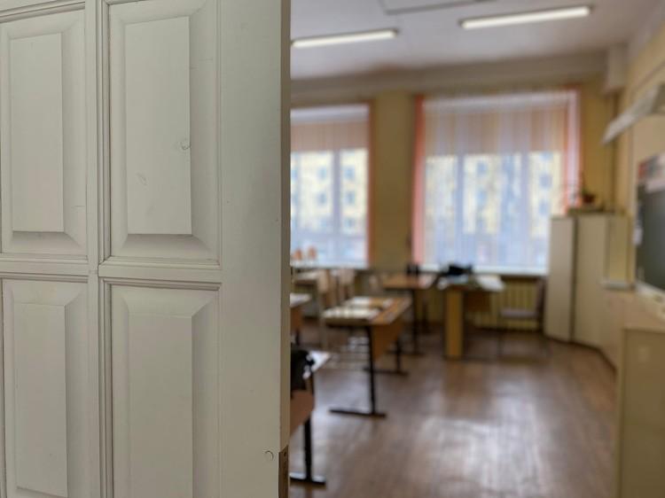 Уже 17 школ в Удмуртии перешли на дистанционное обучение. Фото: Людмила Куликова