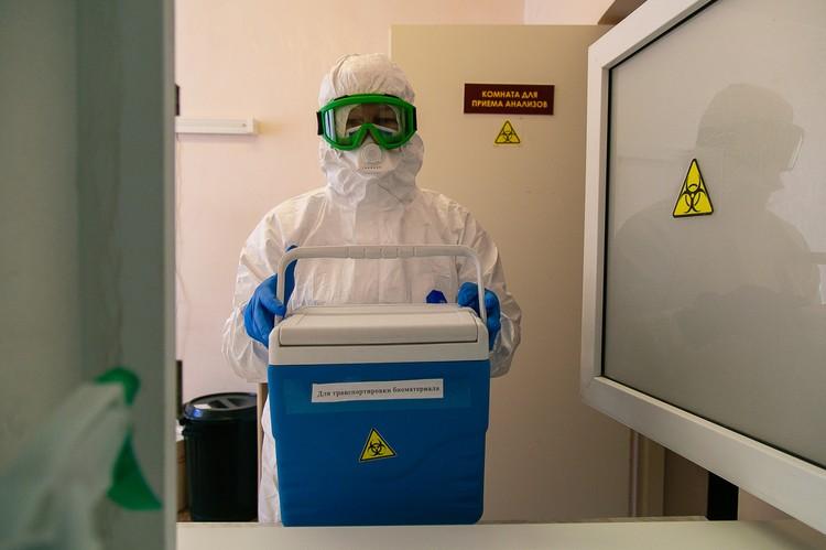 В лаборатории челябинского СПИД-центра проверяют анализы на коронавирус.