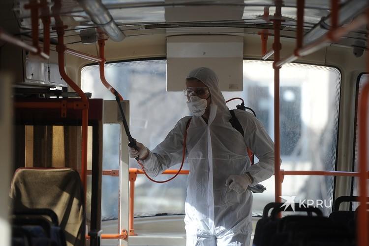 Общественный транспорт чистят каждый день