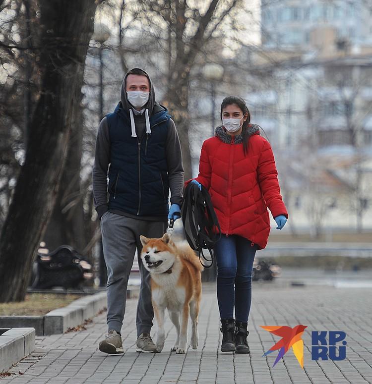 Разрешено гулять с домашними животными на расстоянии не более 100 метров от дома