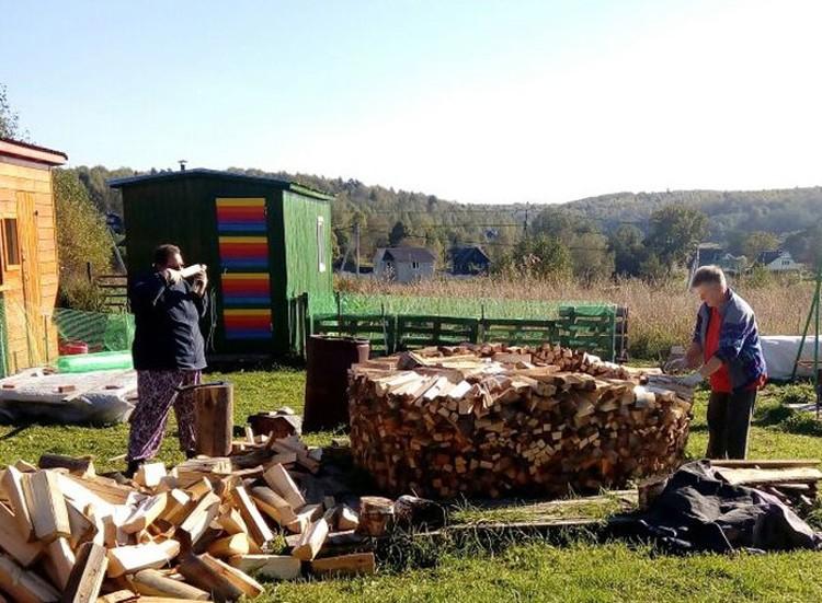Короче, огородом живут Гудрун и Анья. Сами колют дрова и складывают в по-немецки ровненькие стопки.