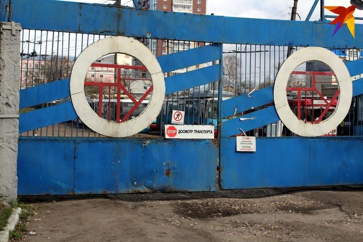 """Сколько """"рогатые"""" еще простоят за воротами парка гортранпорта на набережной реки Лазури пока не известно"""