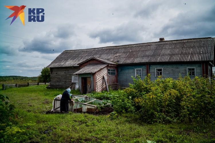 Как можно современного человека, который по телевизору видит бесконечные сериалы про красивую жизнь, заставить жить в селе, где канализации нет в 66% жилищ?