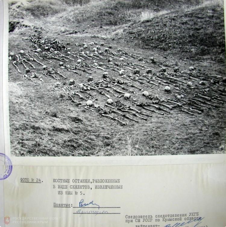 Материалы уголовного дела против нацистских преступников. Фото: ГС РК