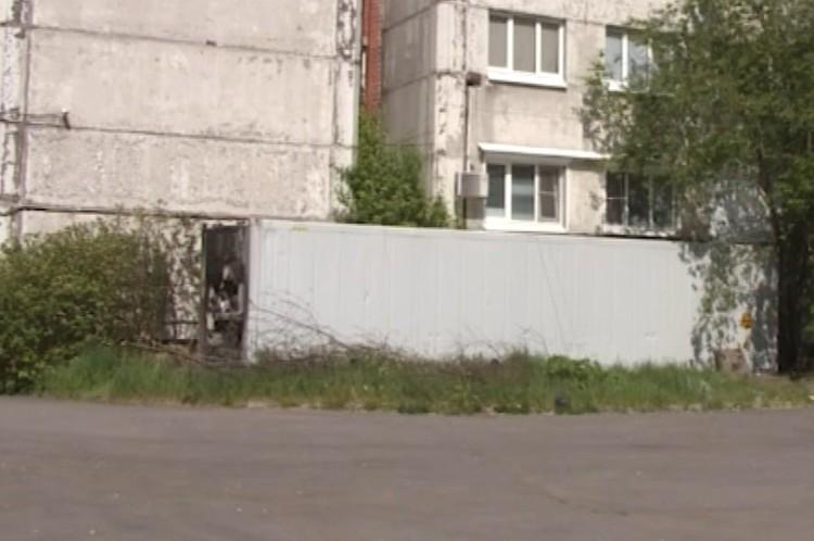 Контейнер располагается на на территории Городской многопрофильной больницы №2. Фото: комздрав Санкт-Петербурга