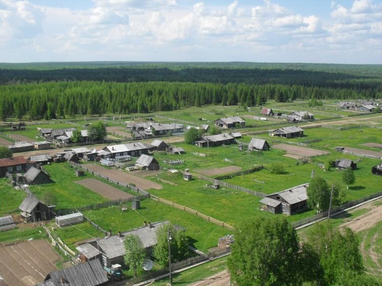 Село Лель со всех сторон окружено лесами. Фото: местных жителей.
