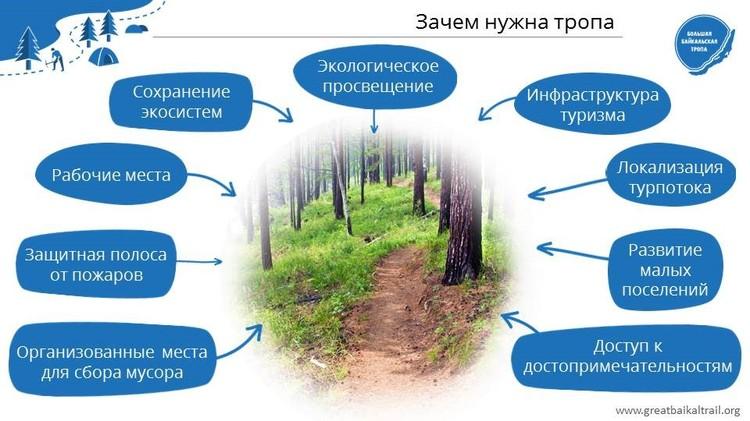 Графика: предоставлено Ассоциацией ББТ.