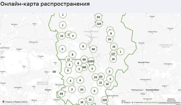 Карта распространения COVID-19 в Пермском крае. Инфографика: краевой оперштаб.