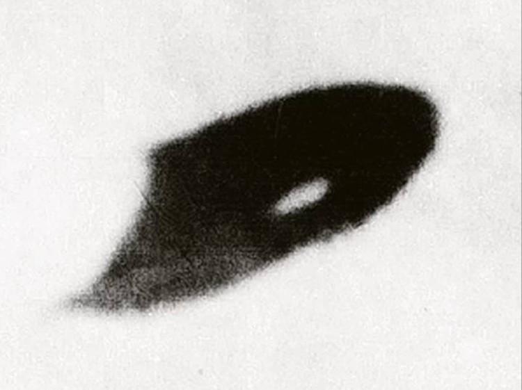 Серп, сфотографированный Уильямом Роудсом.