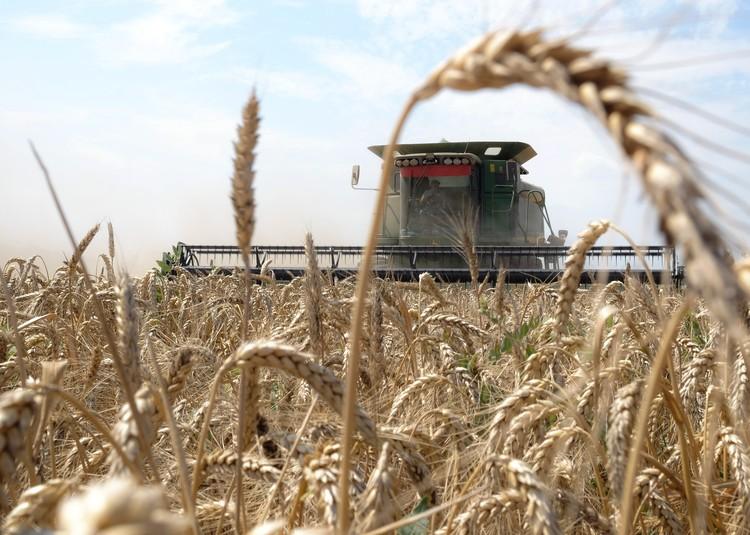 Господдержка позволяет аграриям постоянно обновлять парк сельхозтехники.
