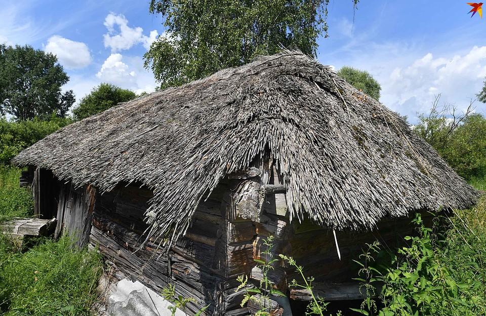 Дома с камышовой крышей - визитная карточка Кудричей и вообще Центрального Полесья. Фото: Виктор ДРАЧЕВ