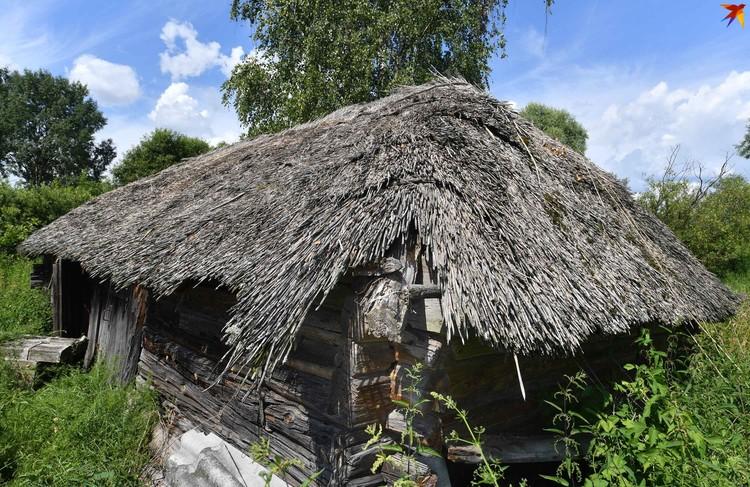 Дома с камышовой крышей - визитная карточка Кудричей и вообще Центрального Полесья.