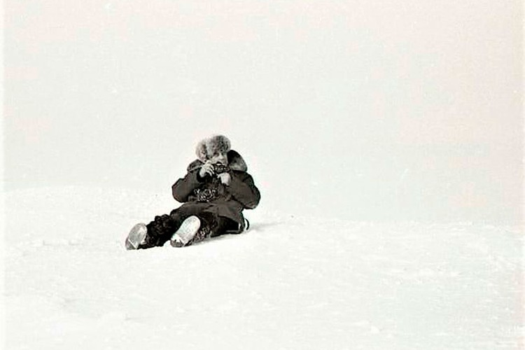 Василий Песков был несколько раз на дрейфующих станциях «Северный полюс». Фото: Владимир СНЕГИРЕВ
