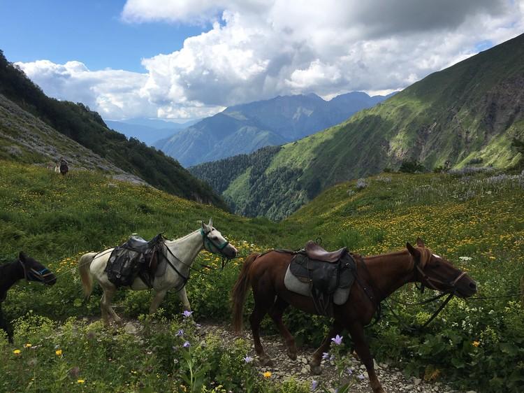 К Бзерпи идут не только пеком: многие – на лошадях с поклажей спешат добраться до базового лагеря.