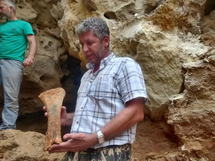 Новая находка - древняя слоновая кость