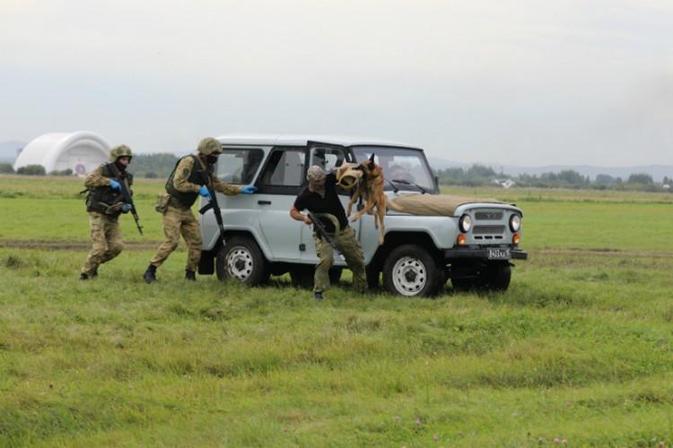 Для посещения открыты 12 выставочных мест на двух экспозициях, где размещены 115 единиц военной техники