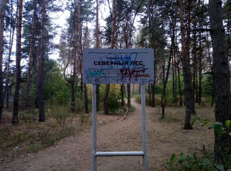 Аншлаг, в котором Северным лес объявлен охраняемой территории, уже основательно испортили.