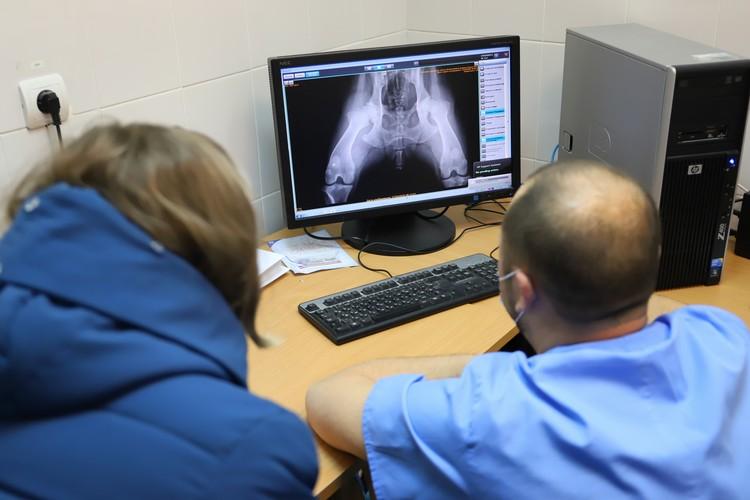 Животным, как и людям, делают рентген
