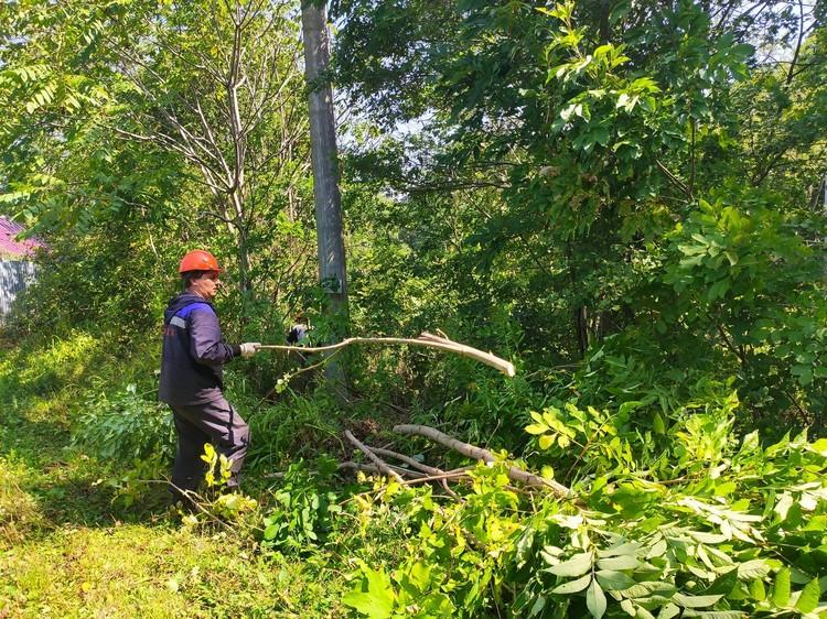 После подключения высоковольтных объектов началась самая кропотливая работа – уборка деревьев, обломков веток и крыш с линий электропередачи