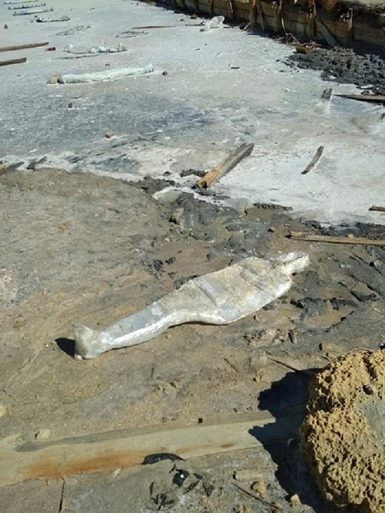 Фото: «Инцидент Крым»/vk.com