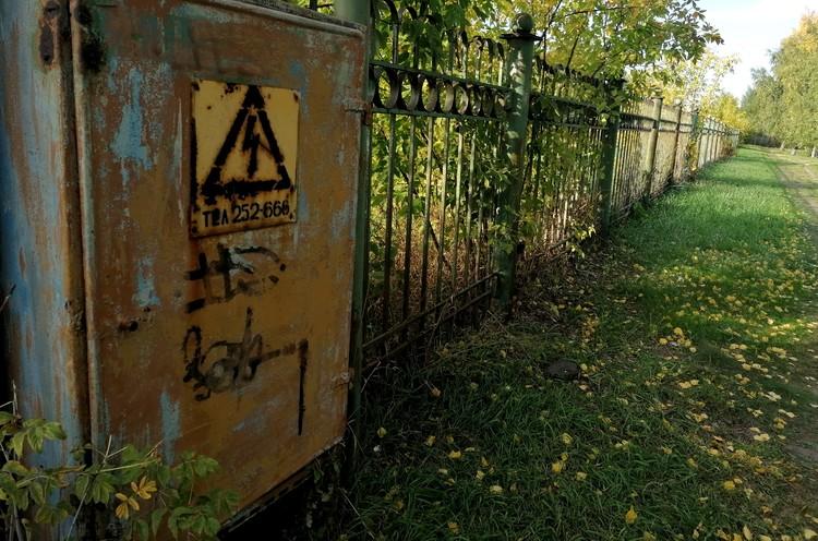 Видавший виды забор – чуть ли не единственное напоминание о когда-то преуспевающем совхозе «Декоративные культуры»