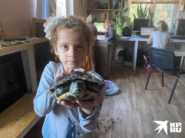 Когда Белле исполнилось три года, ее должны были отправить в обычный детдом, возможно, в другой регион.