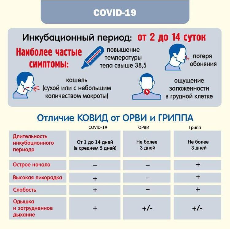 Как отличить ковид от ОРВИ и гриппа. Инфографика предоставлена минздравом Челябинской области.
