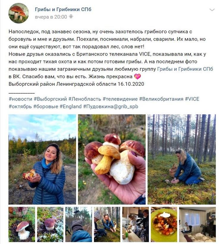 Сбор грибов - очень русское хобби. Фото: vk.com/grib_spb