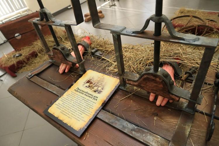 В барнаульском музее открылась необычная выставка.