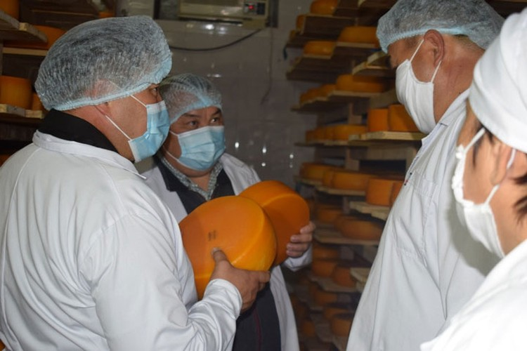 Теперь уже экс-глава области активно выступал за поддержку местного производителя. Молочную продукцию отменного качества в Иссык-Кульской области выпускают три фирмы.