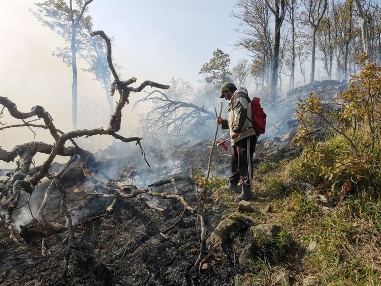 Огонь может охватить ближайшие населенные пункты. Фото: МЧС по краю