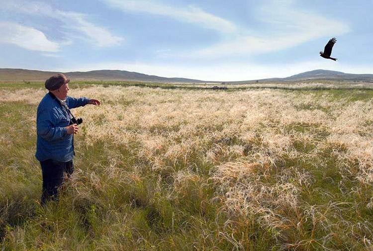 Степной природный заповедник «Оренбургский» - уникальный уголок дикой природы. Фото: Сергей Жданов