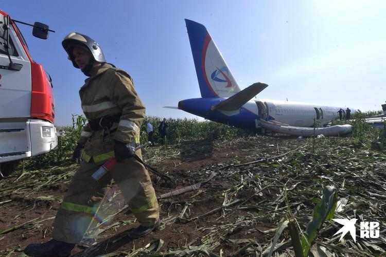 Пожарный МЧС после проливки самолета, севшего на кукурузное поле в Московской области в августе 2019 года