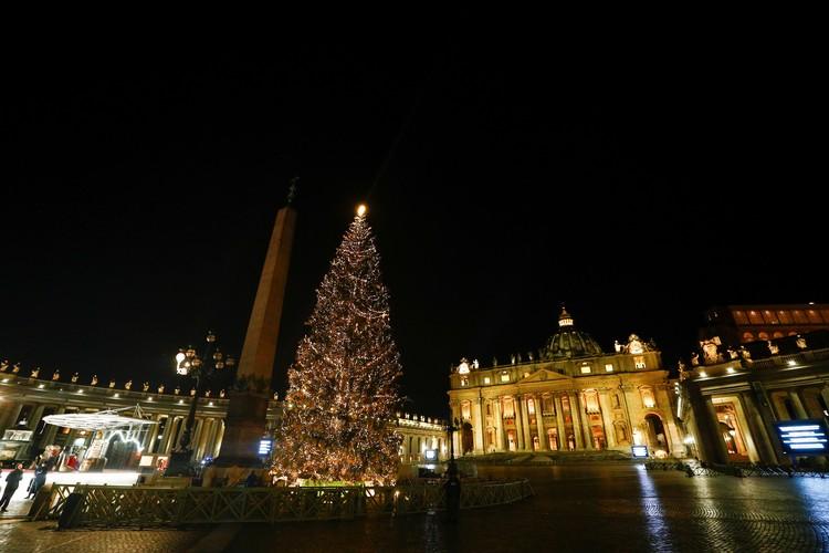 En la ciudadela del catolicismo mundial, el Vaticano, se coloca un árbol de Navidad en St.  Peter.