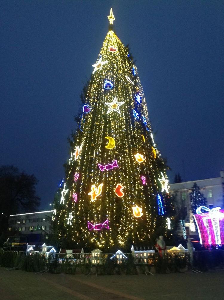 Новогодняя елка 2021 в Бресте. Фото: телеграм-канал Александра Рогачука