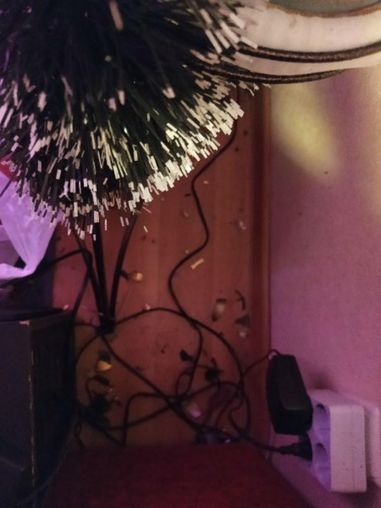 У Ольги Дирингер осколки от фонаря застряли в стене. Фото: Ольга Дерингер