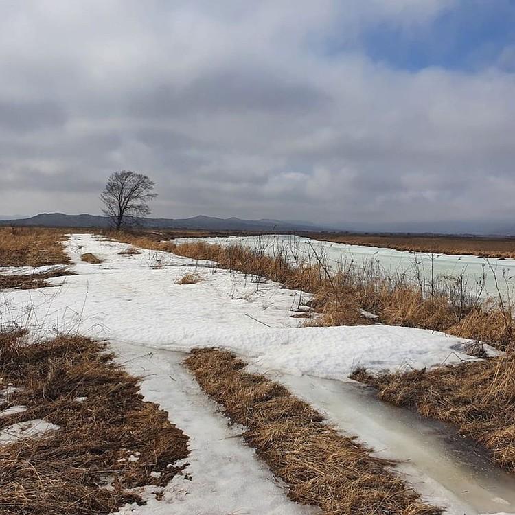 Алексей решил сократить путь и поехал по льду.