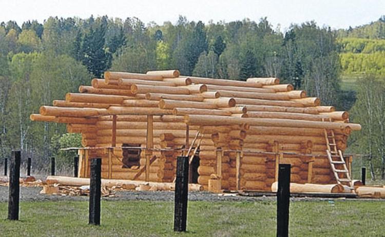 Бизнес виссарионовцев: вот такие особняки из кедра они изготавливают в тайге и отправляют на фурах столичным миллионерам.