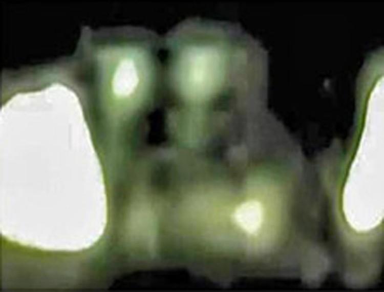 Инопланетяне выглядели, ка и положено им. Более того, возились под куполом, поворачиваясь разными сторонами